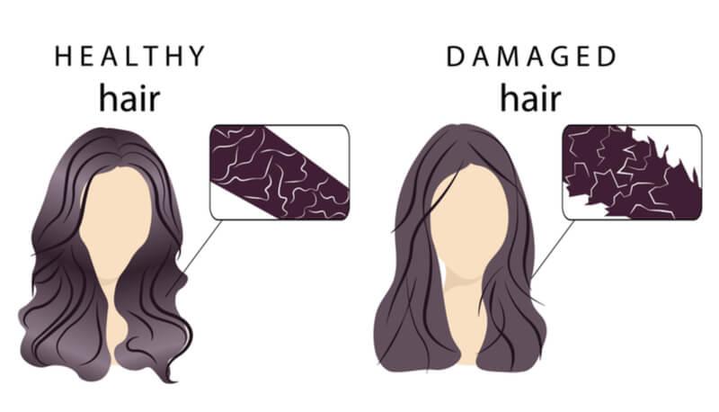 healthy vs damaged hair